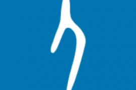 汉字的故事(*Mod*)v1.1.0直装/破解/会员/VIP版