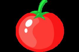 番茄宝盒(*VIP*)v2.3破解版 ★主打顶级VIP直播★