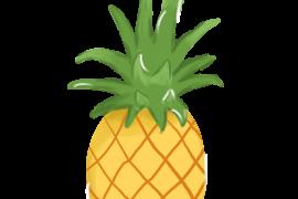 菠萝(*TV*)v1.0.0脱壳/去广告/直装/完美/专业/精简/Mod版