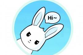 兔子微皮恩(*VIP*)v3.6.6.1立哥推荐★秒杀佛跳墙+老王★科学上网
