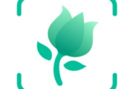 PictureThis 花卉识别v3.7.1 高级版/无病毒/无插件/无暗扣