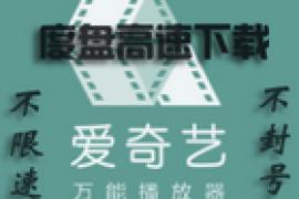 爱奇艺万能播放器度盘下载专用版绿色精简版