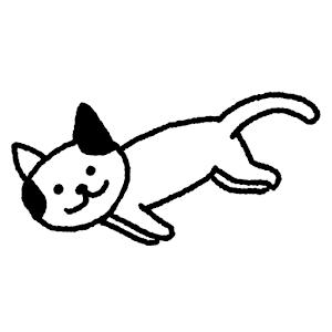 酷猫影视(*New*)破解版 ★真心超强大★