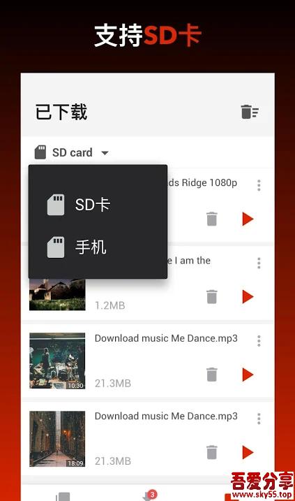 国外视频下载器(*Mod*)直装/破解/高级/会员版