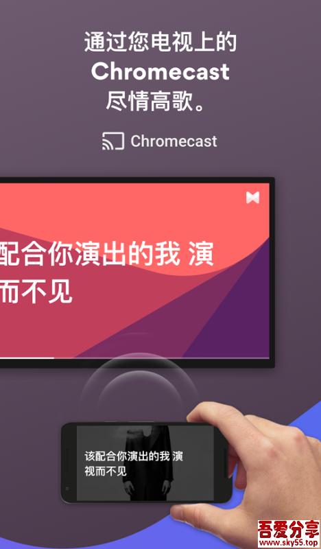 歌词音乐播放器(*PRO*)直装/破解/高级/中文版