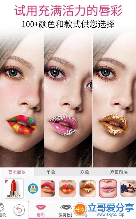 玩美彩妆(*PRO*)直装/专业/高级/专业/会员/VIP版